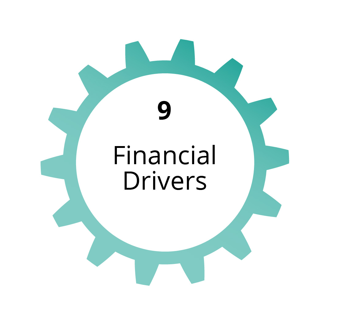 009 Financial Drivers